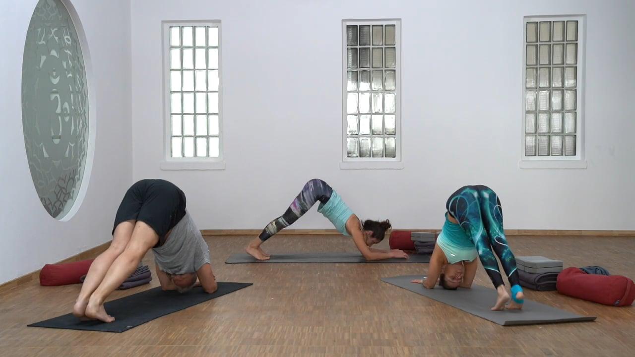 Yoga Flow & Restore